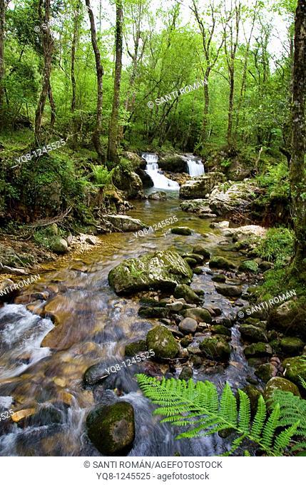 waterfall, llanes, asturias, Spain
