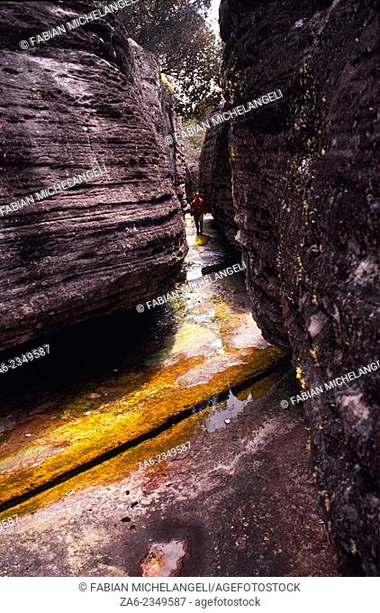 Giant Rocks on river bed on the summit of Auyantepuy dwarf explorer in a labyrinth of stratified boulders. Canaima National Park, Bolivar state