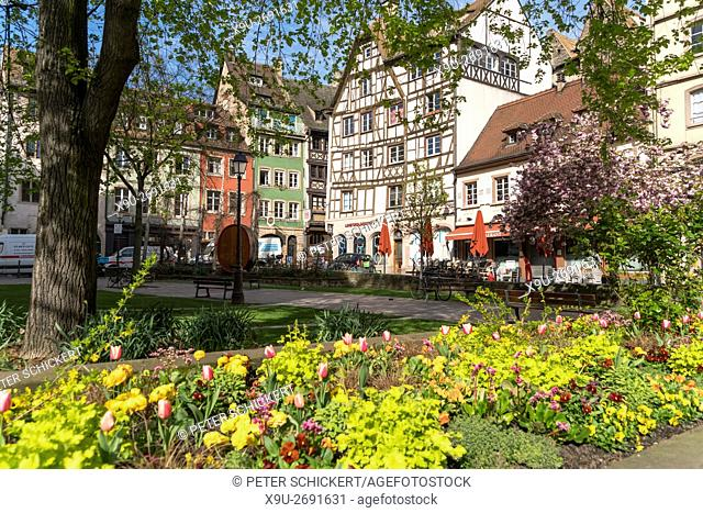 spring flowers on Place des Tripiers in the old town of Strasbourg, Alsace, France