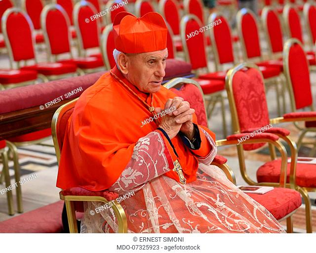 Pope Francis celebrates Holy Mass in the Vatican Basilica with the new cardinals on the occasion of the opening of the Synod of Bishops for the Pan-Amazon...