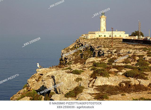 Lampedusa lighthouse, Sicily, Italy