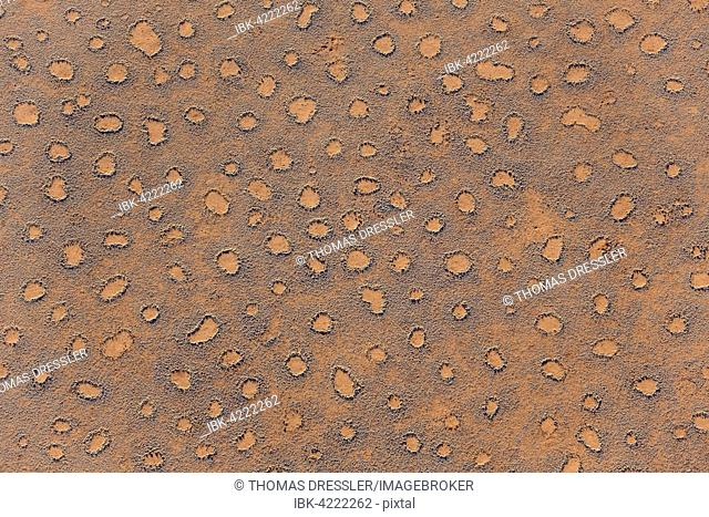 Aerial view from a hot-air balloon at the edge of the Namib Desert, Fairy Circles, circular patches without any vegetation which according to recent scientific...