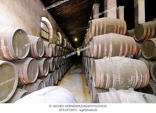 Wine cellar. Sanlúcar de Barrameda. Cádiz province. Andalusia. Spain