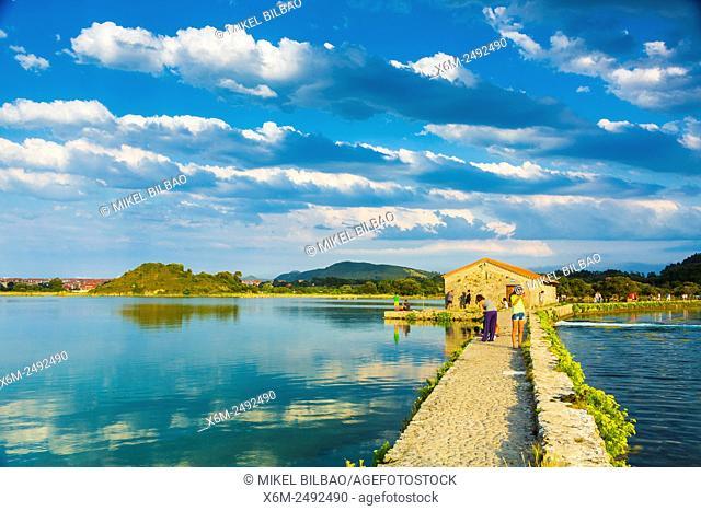 Tide mill. Joyel salt marshes. Marismas de Santoña, Victoria y Joyel Natural Park. Cantabria, Spain, Europe