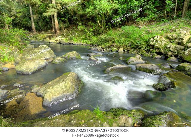 The Hatea River below Whangarei falls, Whangarei, Northland, New Zealand