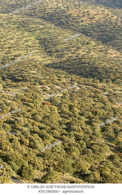 Vistasde la dehesa, desde el Castillo del Parque Nacional de Monfragüe, Extremadura, Spain