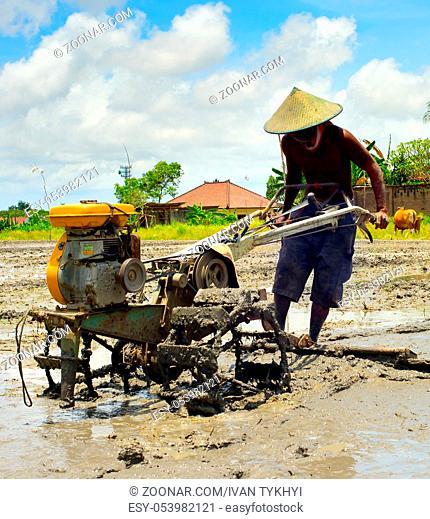 Local man working on a rice field. Bali island, Indonesia