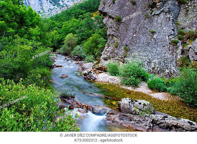 Curueño River. Hoces de Valdeteja. Nocedo de Curueño. Leon Province. Castilla y Leon. Spain