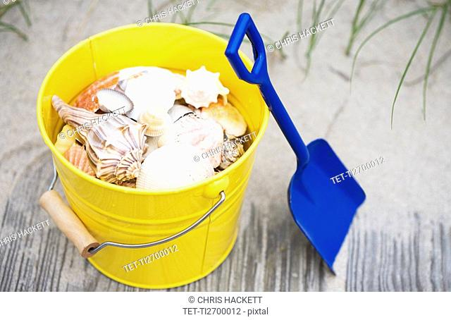 Beach shovel and pail of shells