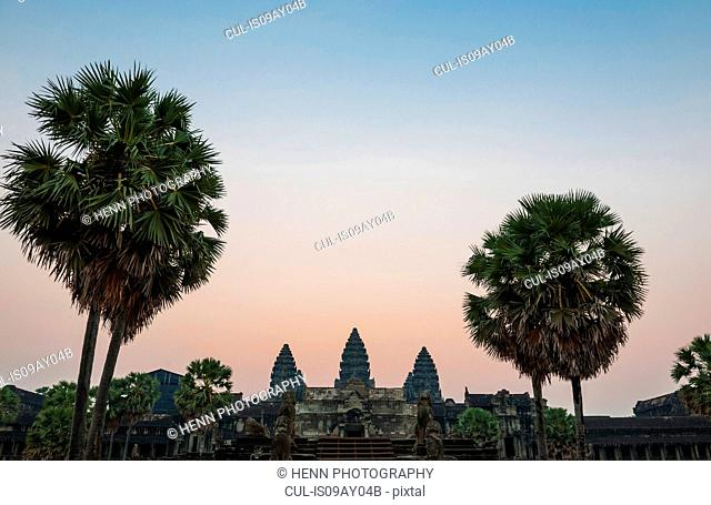 Palm trees and Angkor Wat temple at sunrise, Siem Reap, Cambodia