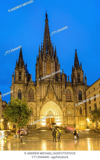 Barcelona Cathedral at night, Catalonia, Spain