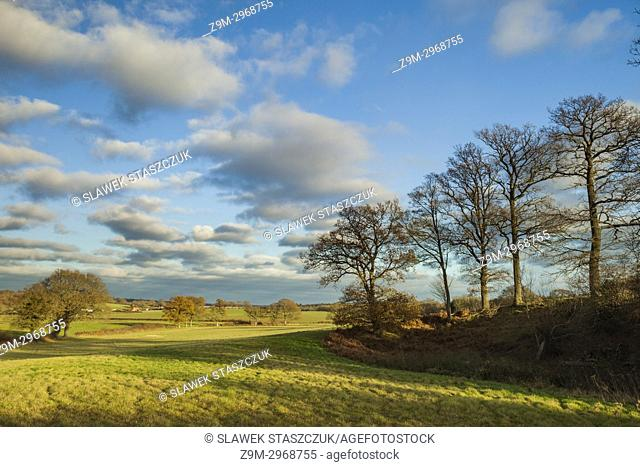 Autumn afternoon in the West Sussex countryside, England