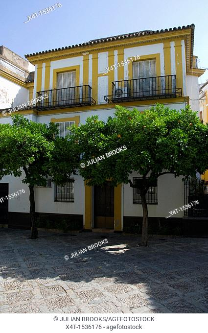 A typical house with orange trees outside the front  Seville, Spain