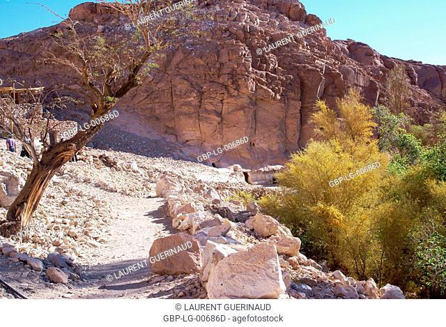 Broken of Jere, Worth of Jere, Poblado Toconao, Atacama Desert, Region of Antofagasta, Santiago, Chile