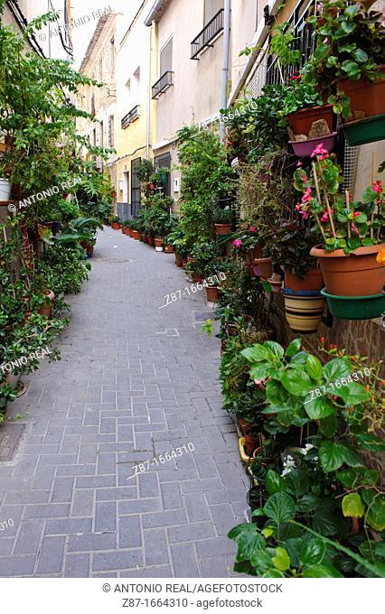 Flower pots in street, Ojos, Valle de Ricote, Murcia, Spain