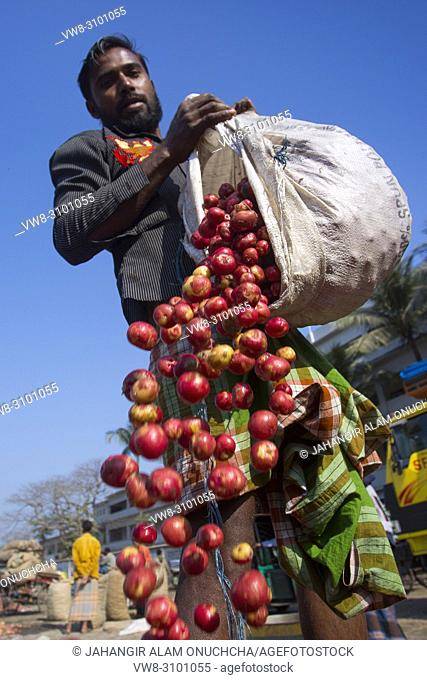 Labors are stacking vegetables in mahasthan hat (popular vendor market), Bogra district, Bangladesh
