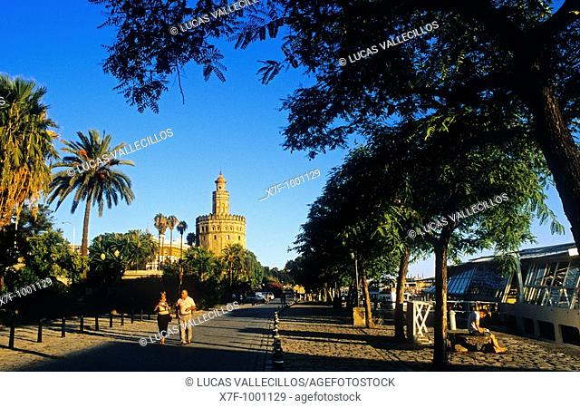 paseo Alcalde Marqués del Contadero, in the background Gold tower  Seville, Andalusia, Spain