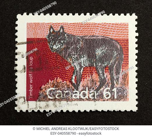 CANADA - CIRCA 1980: Stamp printed in Canada shows a timber wolf, circa 1980