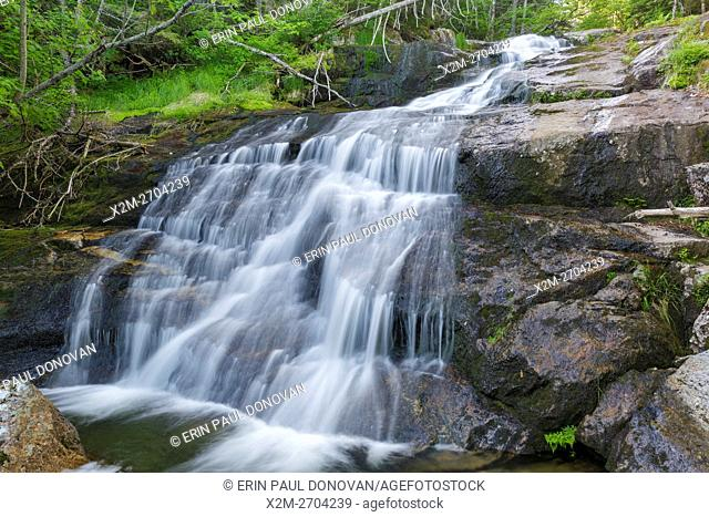 Salmacis Fall on Snyder Brook in Low and Burbank's Grant, New Hampshire during the summer months. This waterfall is located along the Brookside Trail