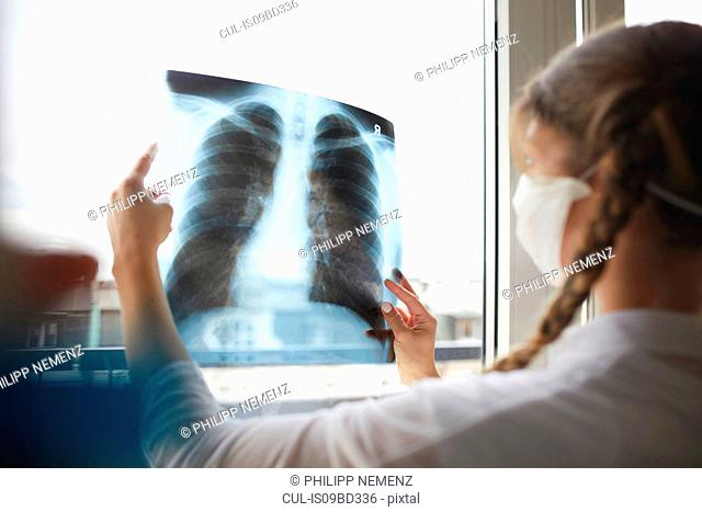 Young female doctor in front of window looking at hospital xray