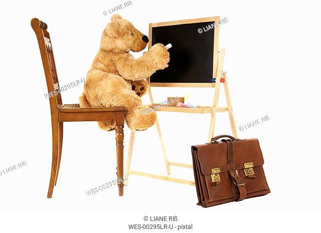 Teddy bear writing on black board