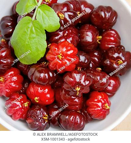 from the Eugenia uniflora tree  Native to Northern South America biut common across the tropical and subtropical world  Delicious when ripe!