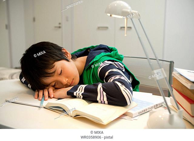 Boy Sleeping at Desk