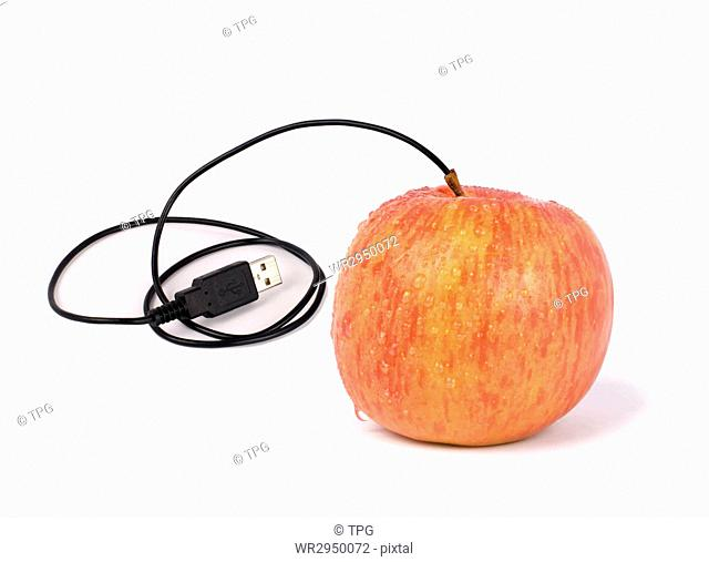 USB apple, someday we can deliver real apple by internet, or computers need green energy.