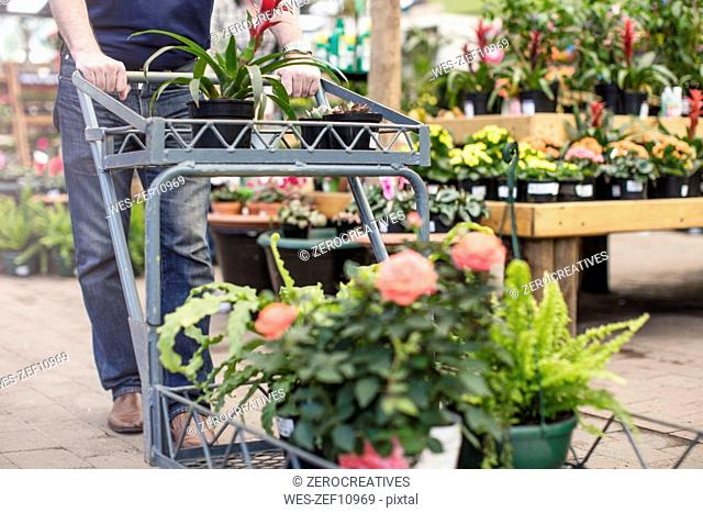 Man pushing a trolley full of plants in garden centre