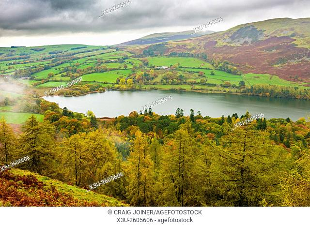 View over Loweswater and Holme Wood in the Lake District National Park, Cumbria, England
