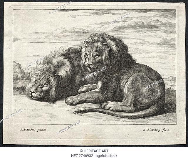 Various Lions. Creator: Abraham Blooteling (Dutch, 1640-1690)