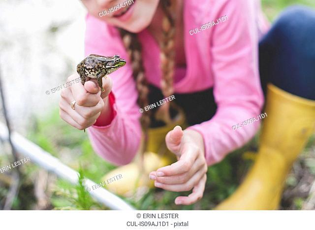 Cropped shot of girl holding up frog