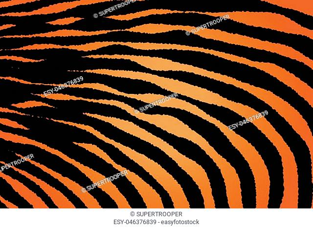 Animal Background Pattern Texture Tiger Orange Stripe Black Jungle Safari, Zebra Skin Background, Leopard Skin Texture