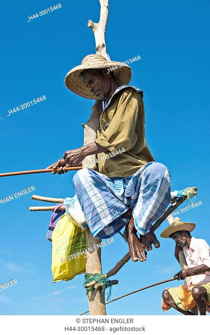 Sri Lanka, Asia, ficherman, Fischer, stilt fisherman