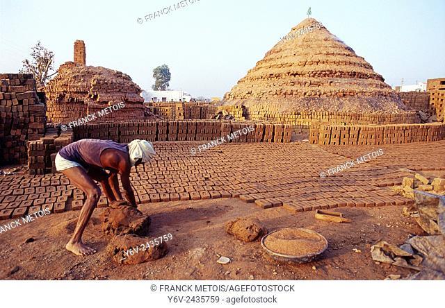 Worker in a brickyard ( India)