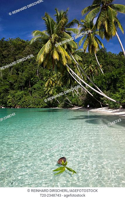 Tropical Island at Strait of Iris, Triton Bay, West Papua, Indonesia