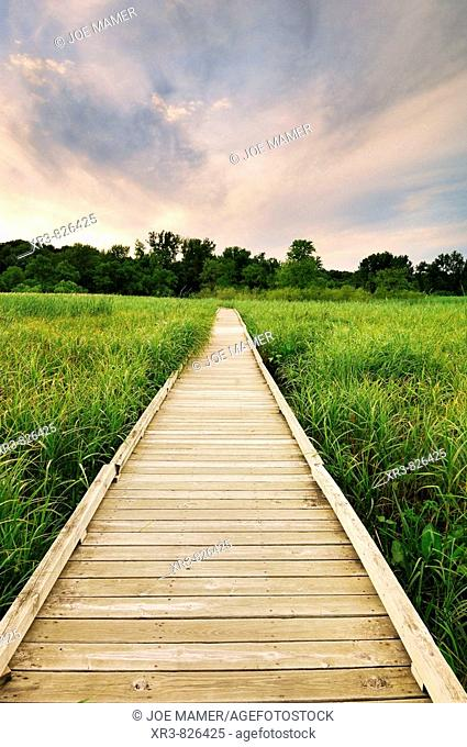A boardwalk leads into a low area of the Minnesota River Valley in the Minnesota Valley National Wildlife Refuge