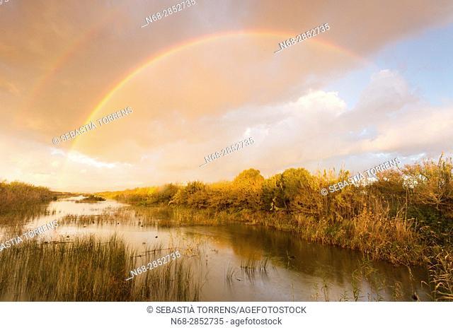 Rainbow over PN s'Albufera, Majorca, Balearic Islands, Spain