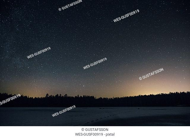 Sweden, Sodermanland, frozen lake Navsjon in winter under starry sky at night