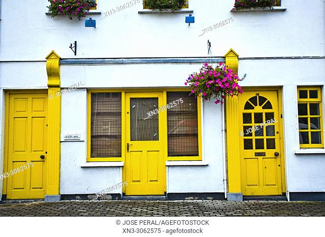 House with yellow doors, Kilkenny town, County Kilkenny, province of Leinster, Ireland, Europe