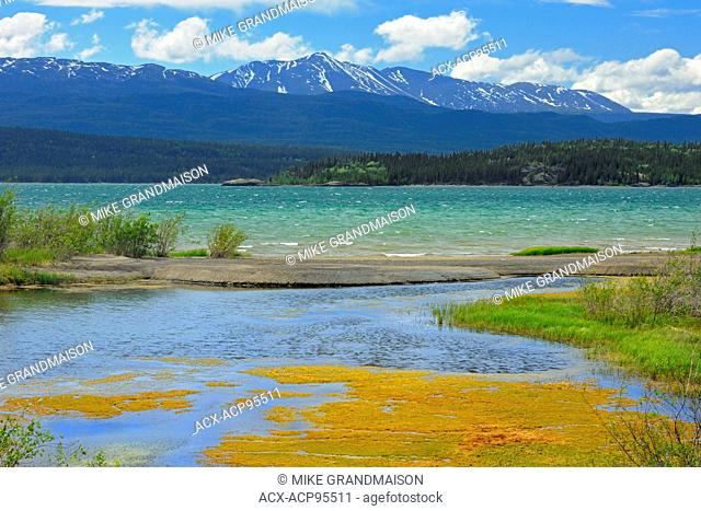 Marsh Lake, a widening of the Yukon River on the Alaska Highway near Whitehorse Yukon Canada