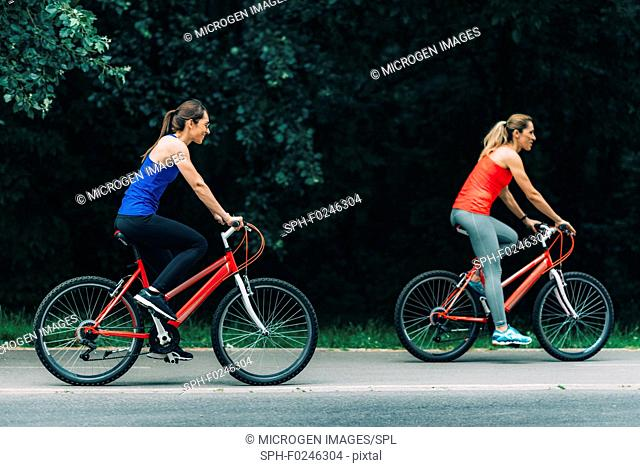 Female friends riding bikes together in park
