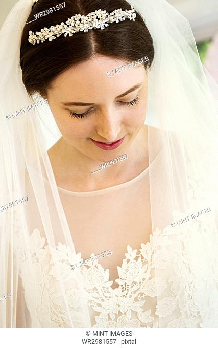 A bride in her wedding dress, tiara and veil, head and shoulders. A fashionable dress with lace bodice and net bodice and sleeves