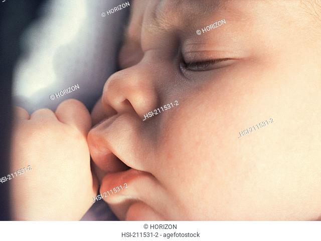 Profile of a baby sleeping, close-up