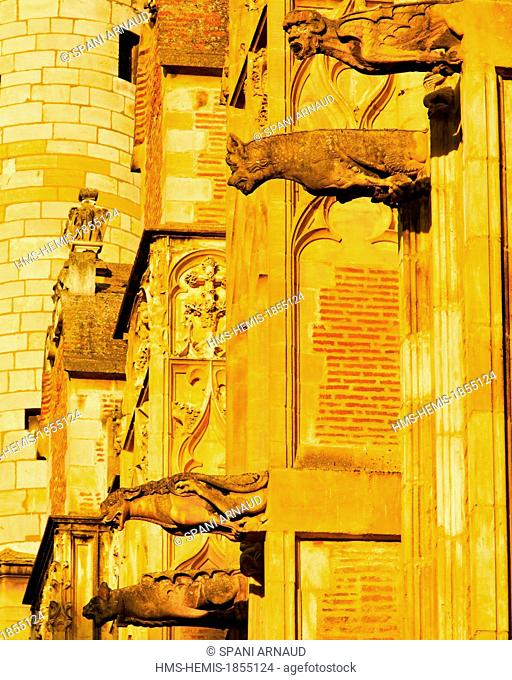 France, Haute Garonne, Toulouse, Saint Etienne Cathedral, exterior architectural detail of the Cathedral