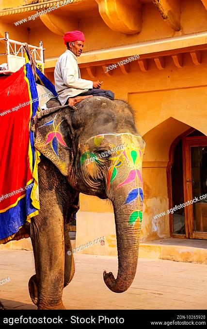 Mahout riding decorated elephant inside Jaleb Chowk (main courtyard) of Amber Fort, Rajasthan, India. Elephant rides are popular tourist attraction in Amber...