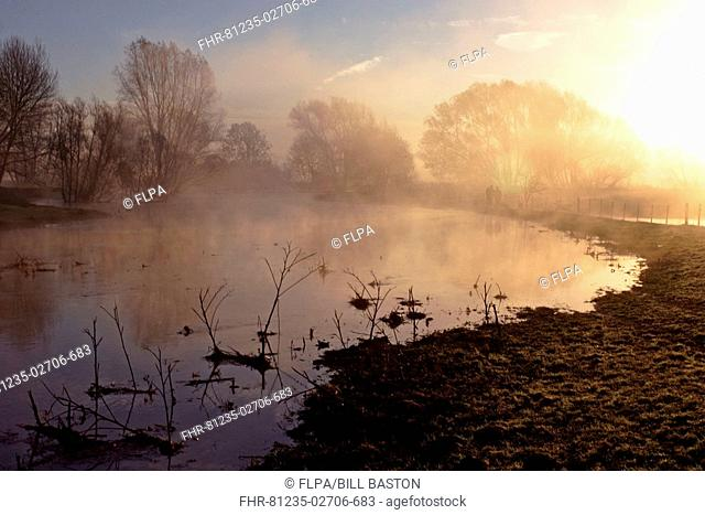 River in mist with dog walkers at dawn, Nayland, Stour Valley, Suffolk, England, november