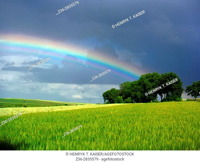 Rainbow in Lesser Poland near Slomniki