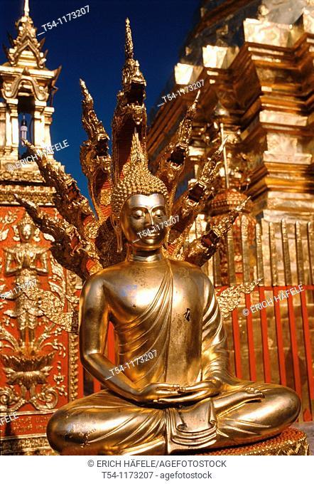 Golden Buddha in a golden chedi at Wat Doi Suthep