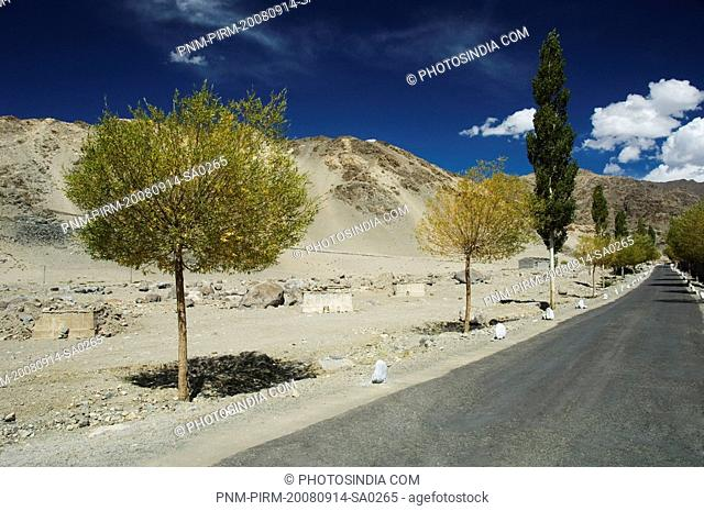 Road passing through a landscape, Ladakh, Jammu and Kashmir, India